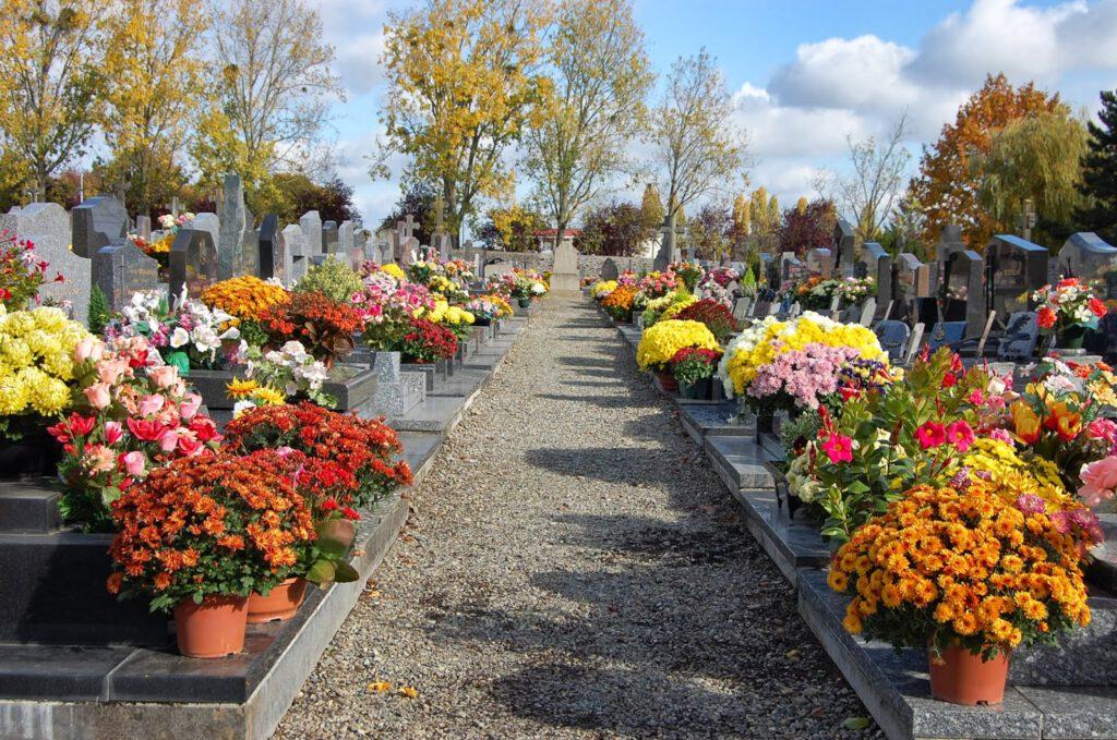 Halottak napja: Halottak napi sírdíszítés virágzókkal